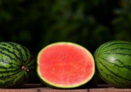 Semangka Memiliki Banyak Manfaat Hingga Melawan Sel Kanker